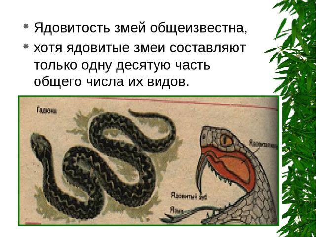 Ядовитость змей общеизвестна, хотя ядовитые змеи составляют только одну десят...