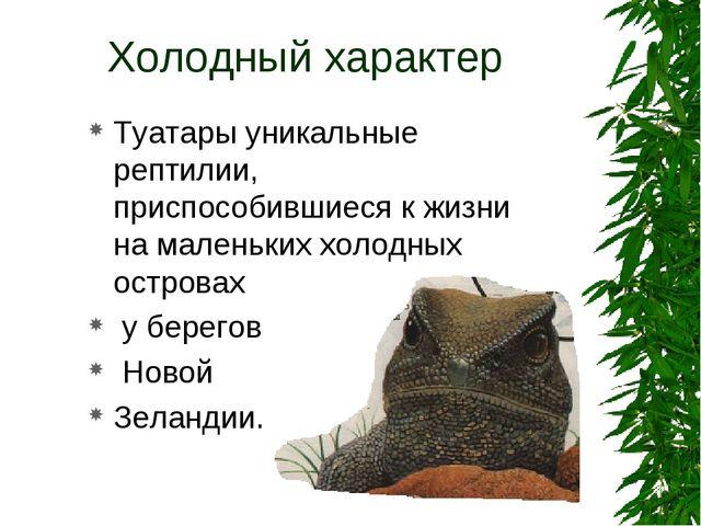 Холодный характер Туатары уникальные рептилии, приспособившиеся к жизни на ма...