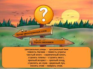 Залив многозначных слов Залив омонимов Бухта омонимов Залив многозначных слов