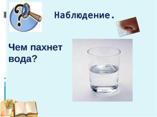 Наблюдение. Чем пахнет вода?