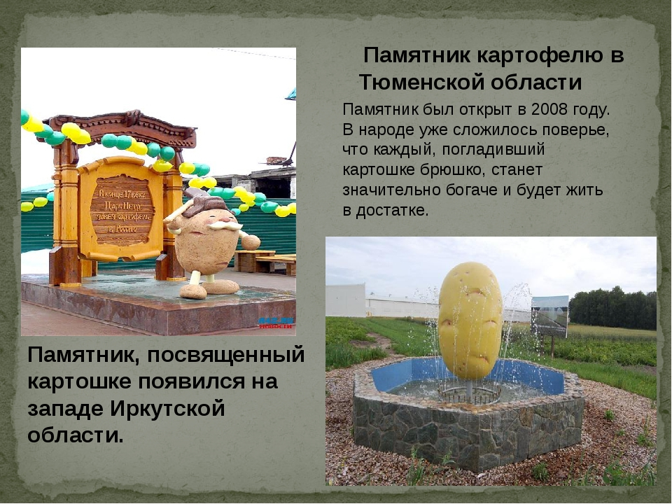 . Памятник картофелю в Тюменской области Памятник был открыт в 2008 году. В н...