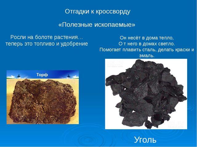 Уголь Отгадки к кроссворду «Полезные ископаемые» Росли на болоте растения… те...