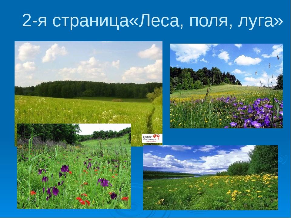 2-я страница«Леса, поля, луга»