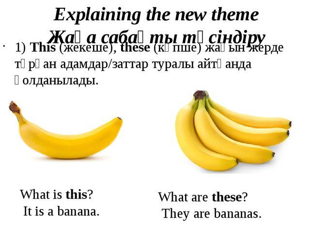 Explaining the new theme Жаңa сабақты түсіндіру 1) This (жекеше), these (көп...