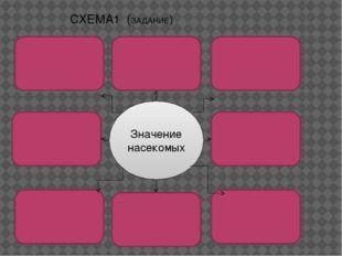 Значение насекомых СХЕМА1 (ЗАДАНИЕ)