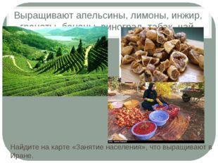 Выращивают апельсины, лимоны, инжир, гранаты, бананы, виноград, табак, чай. Н