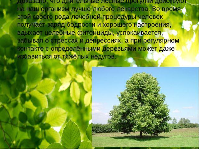 Доказано, что длительные лесные прогулки действуют на наш организм лучше люб...