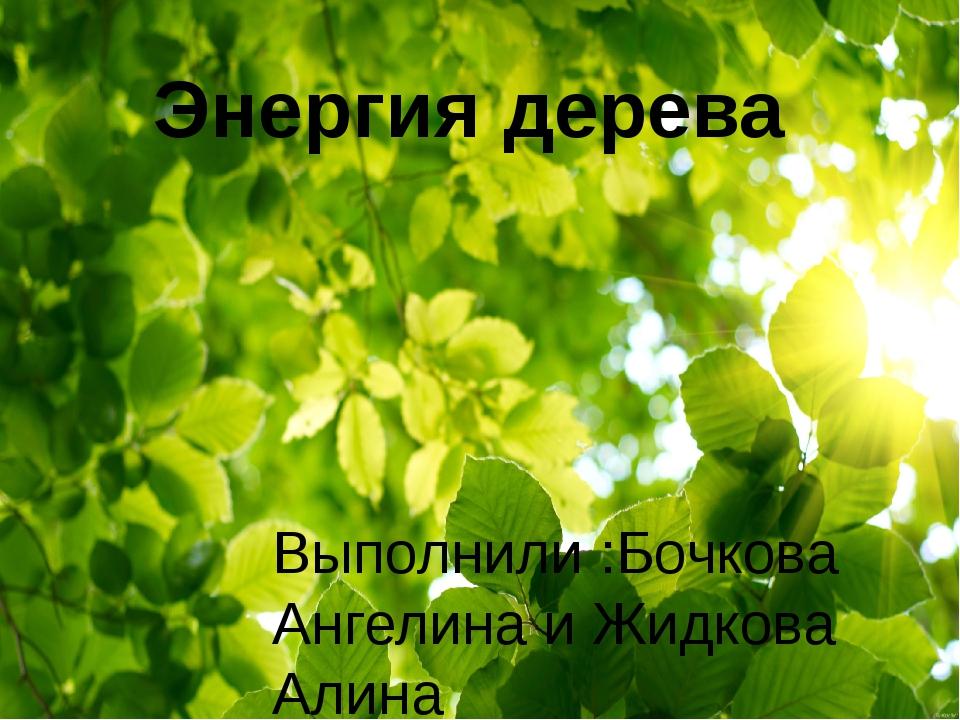 Энергия дерева Выполнили :Бочкова Ангелина и Жидкова Алина Учитель: Гридина Ю...