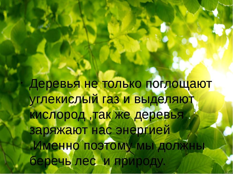 Деревья не только поглощают углекислый газ и выделяют кислород ,так же дерев...