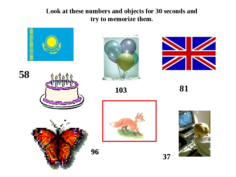 Look at these numbers and objects for 30 seconds and try to memorize them. 58...