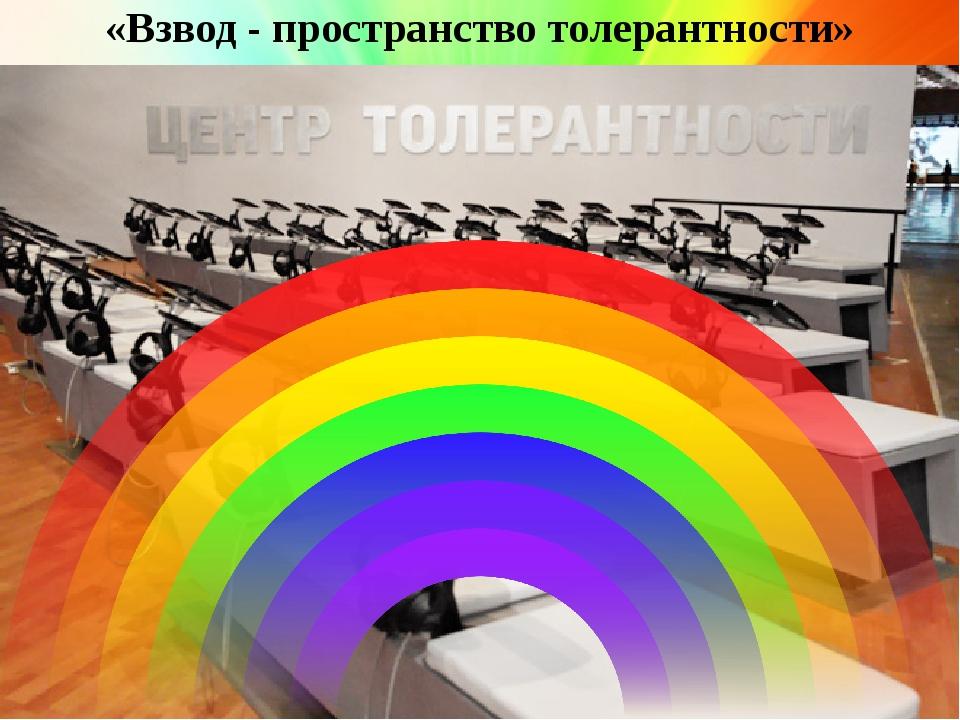 «Взвод - пространство толерантности»