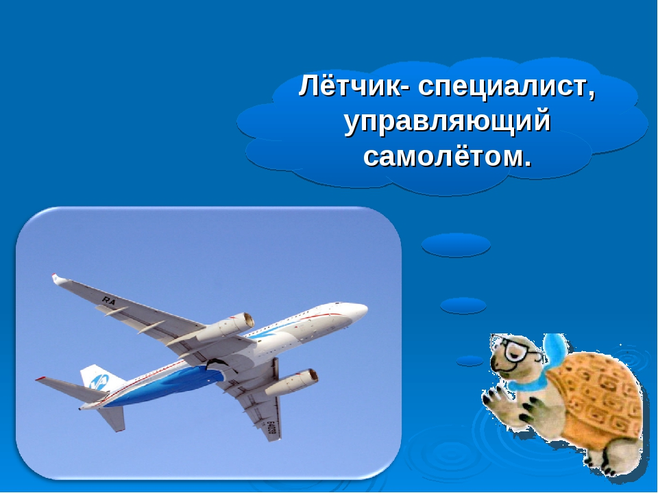 Лётчик- специалист, управляющий самолётом.