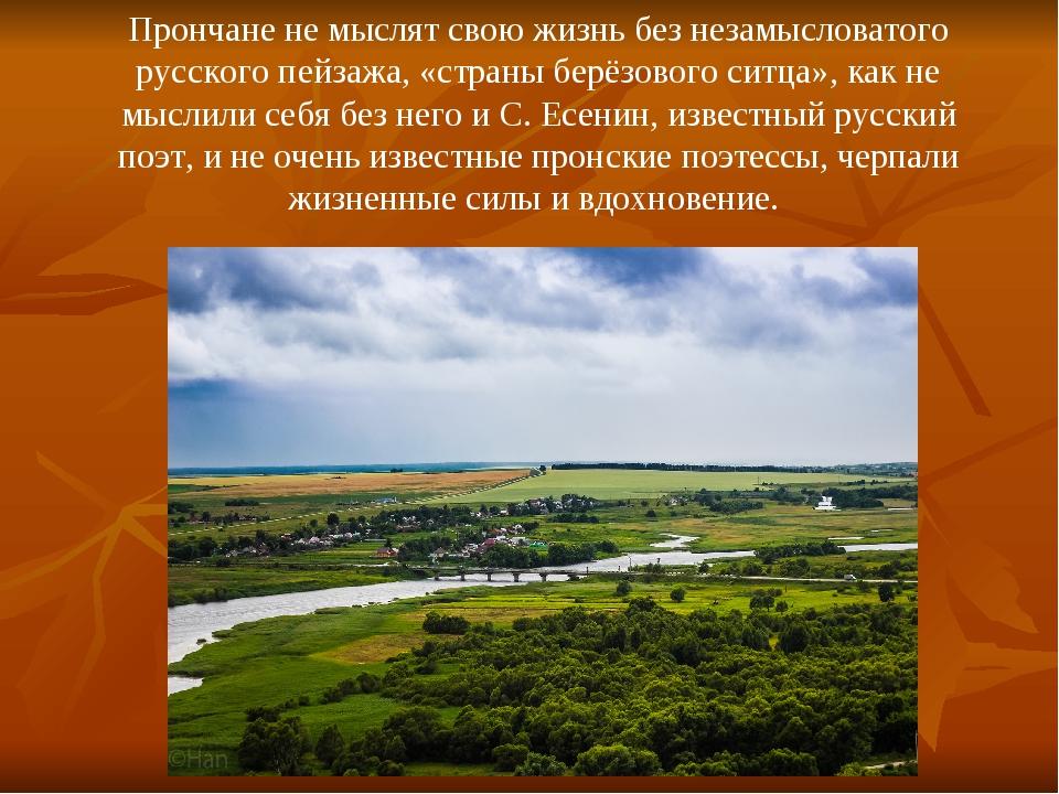 Прончане не мыслят свою жизнь без незамысловатого русского пейзажа, «страны б...