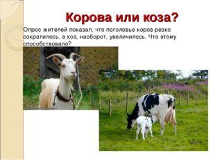 Корова или коза? Опрос жителей показал, что поголовье коров резко сократилось