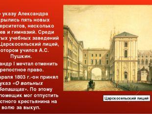 По указу Александра открылись пять новых университетов, несколько лицеев и ги