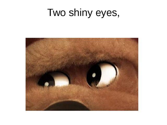 Two shiny eyes,