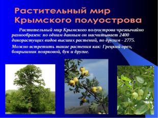 Растительный мир Крымского полуостровачрезвычайно разнообразен: по одним да