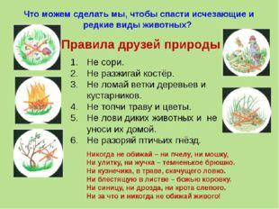 FedotoVA