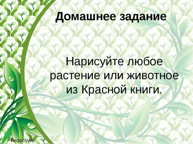 Домашнее задание Нарисуйте любое растение или животное из Красной книги. Fedo...