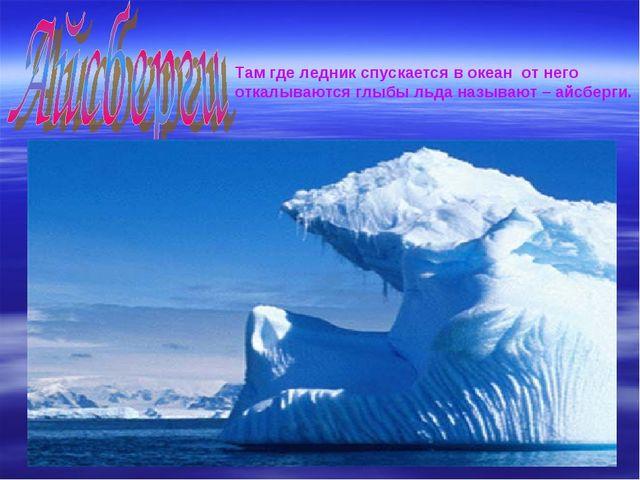 Там где ледник спускается в океан от него откалываются глыбы льда называют –...
