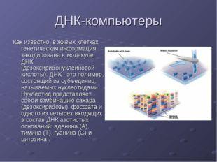 ДНК-компьютеры Как известно, в живых клетках генетическая информация закодиро