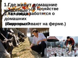 1.Где живут домашние животные? (В хозяйстве человека.) 2.Как люди заботятся о