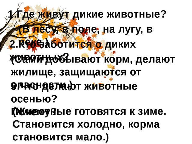 1.Где живут дикие животные? (В лесу, в поле, на лугу, в реке.) 2.Кто заботитс...