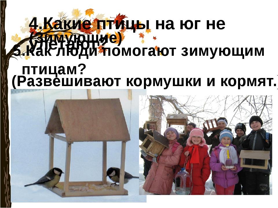 4.Какие птицы на юг не улетают? (Зимующие) 5.Как люди помогают зимующим птица...