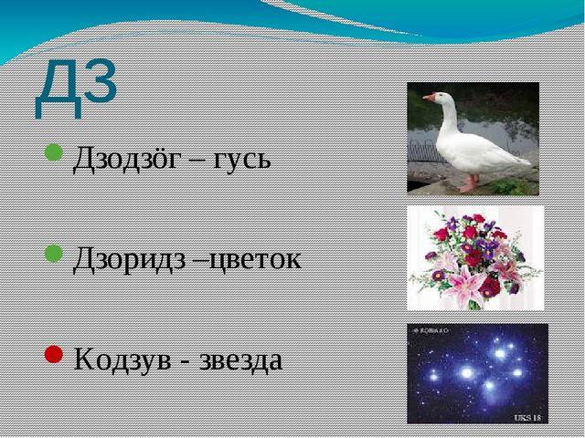 дз Дзодзöг – гусь Дзоридз –цветок Кодзув - звезда