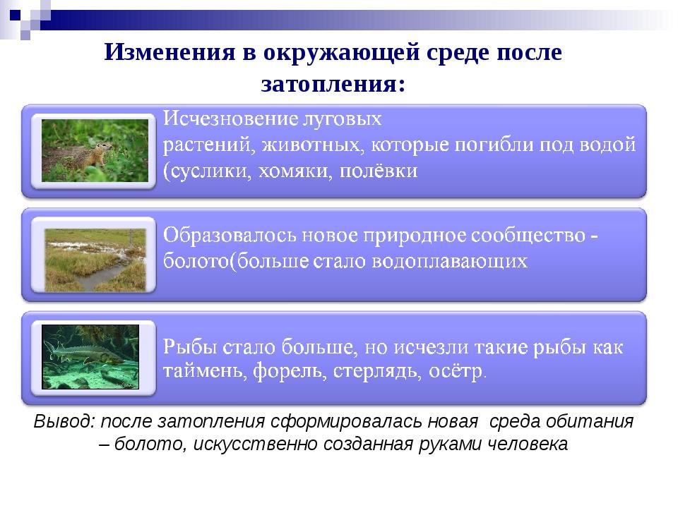 Изменения в окружающей среде после затопления: Вывод: после затопления сформи...