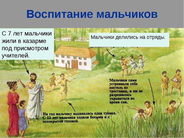 Воспитание мальчиков С 7 лет мальчики жили в казарме под присмотром учителей....
