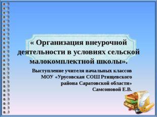 « Организация внеурочной деятельности в условиях сельской малокомплектной шко