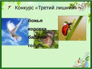 Конкурс «Третий лишний» божья коровка бабочка голубь