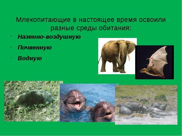 Млекопитающие в настоящее время освоили разные среды обитания: Наземно-возду...