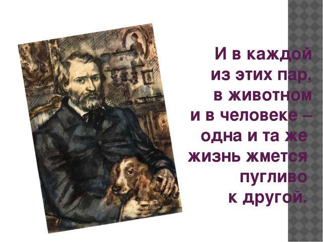 И в каждой из этих пар, в животном и в человеке – одна и та же жизнь жмет...