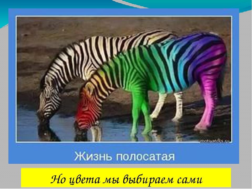 Но цвета мы выбираем сами
