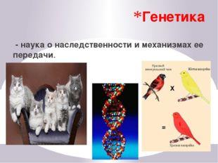 Экология - наука, изучающая взаимоотношения между организмами и со средой оби