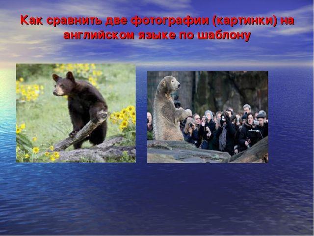 Как сравнить две фотографии (картинки) на английском языке по шаблону
