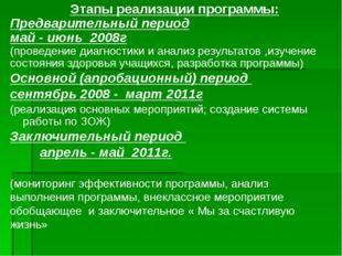 Этапы реализации программы: Предварительный период май - июнь 2008г (проведен