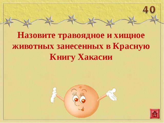Назовите травоядное и хищное животных занесенных в Красную Книгу Хакасии