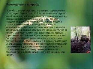 Нахождение в природе Калий — распространённый элемент: содержание в литосфере