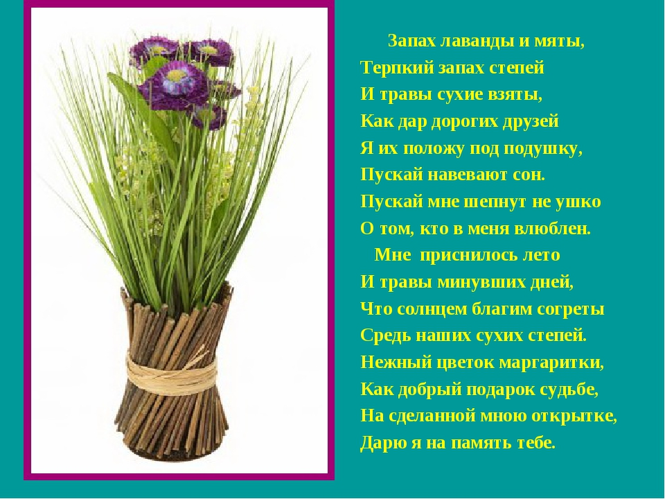 Запах лаванды и мяты, Терпкий запах степей И травы сухие взяты, Как дар доро...