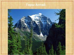 Горы Алтай.