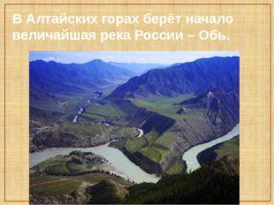 В Алтайских горах берёт начало величайшая река России – Обь.