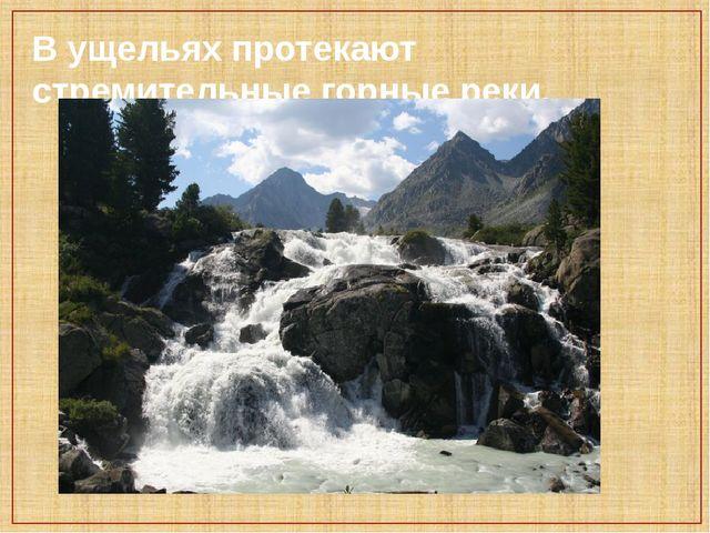 В ущельях протекают стремительные горные реки.