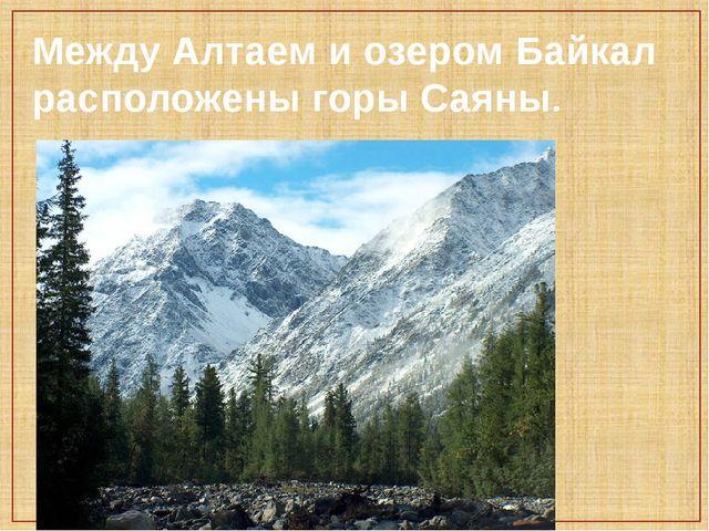 Между Алтаем и озером Байкал расположены горы Саяны.