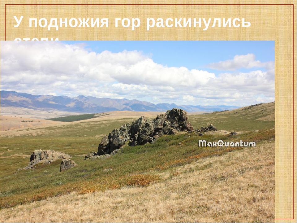 У подножия гор раскинулись степи.