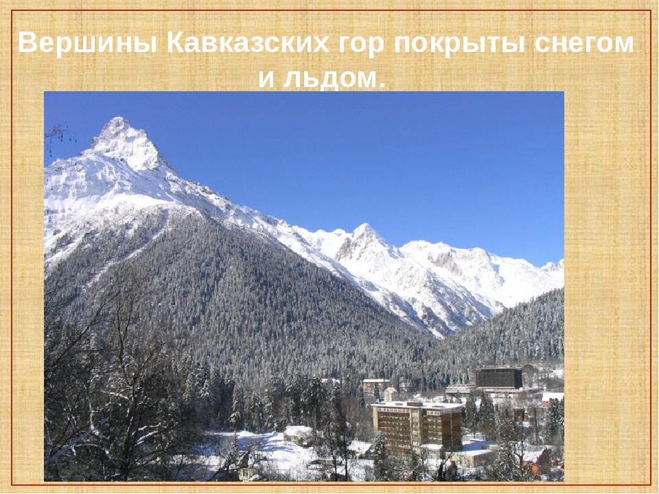 Вершины Кавказских гор покрыты снегом и льдом.