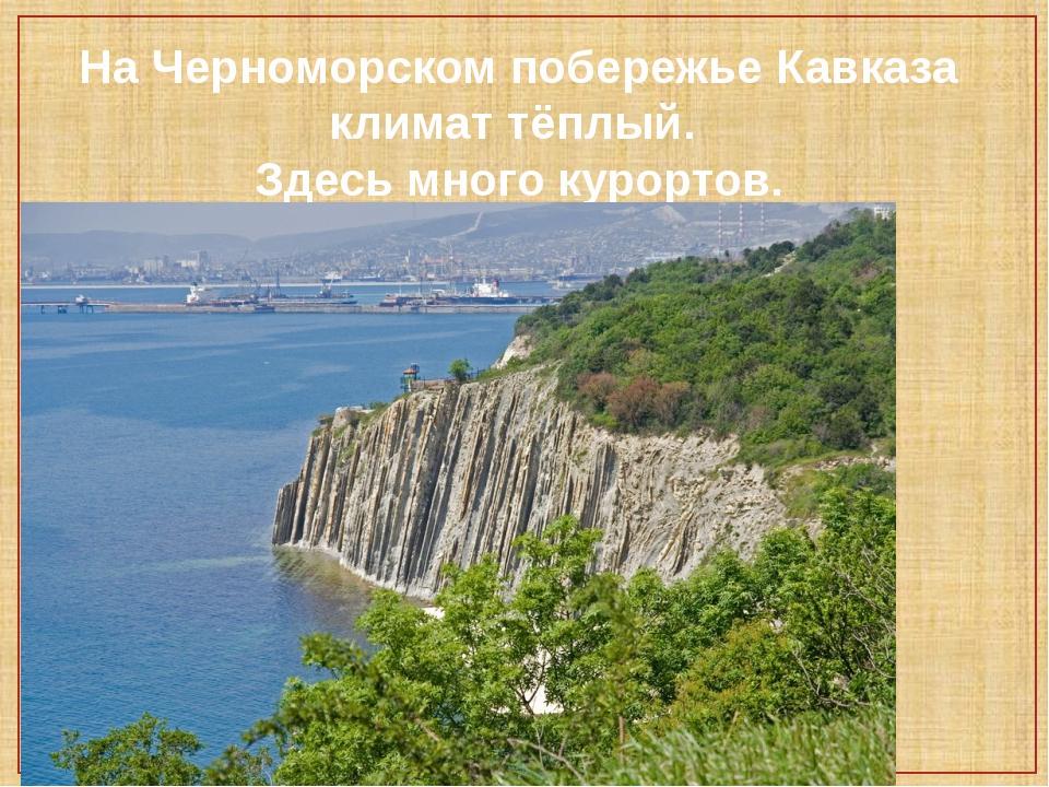 На Черноморском побережье Кавказа климат тёплый. Здесь много курортов.