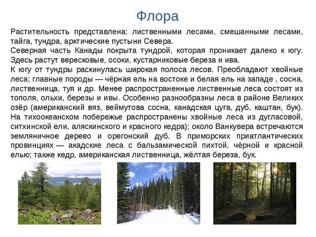 Флора Растительность представлена: лиственными лесами, смешанными лесами, тай...